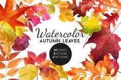 Watercolor autumn leaves by Tatiana_davidova on @creativemarket