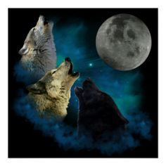 Northern Lights Wolfs Howling Posters