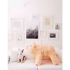 Tessa Neustadt   18 Interior Design Instagram Accounts You Need To Follow Right Now