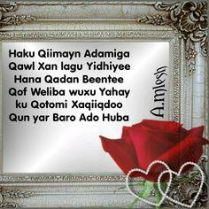 Haku Qiimayn Adamiga Qawl Xan lagu Yidhiyee Hana Qadan Beentee Qof Weliba wuxu Yahay ku Qotomi Xaqiiqdoo Qun yar Baro Ado Huba! !!??