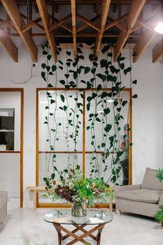 indoor plants the kinfolk office. by luisa brimble.