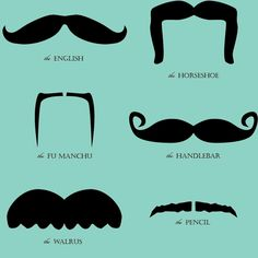 Different kind of Mustaches