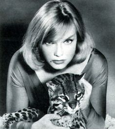 """Following the success of Cathy Gale in the UK, tigerish Anne Francis brought """"private eye-full"""" Honey West to life on US TV. Originating in pulp by Skip and Gloria Fickling in the 1950s, the character and her ocelot debuted on Burke's Law before headlining her own series. But Americans were not Britons: the show was trounced in the ratings by Gomer Pyle."""