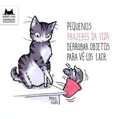 Seu gato adora caixas, morde seu braço com a mesma intensidade que o lambe, é folgado, passeia na frente do monitor do computador, deita em cima do livro que você está lendo e dorme em cima de você, sem nem ao menos pedir licença. Mas todos os gatos são assim, encantadoramente intrometidos. Para provar isso, a designer Manu Cunhas criou o li...
