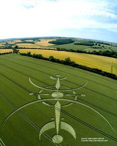 Crop Circle at Clearbury Ring, nr Nunton, Wiltshire. Reported 6th July? 2015