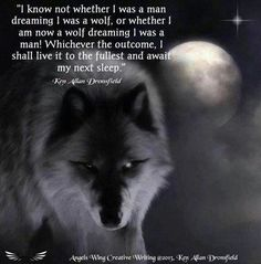 Man or wolf Wolf Spirit, Spirit Animal, Wolf Qoutes, Star Night Light, Wolf Wallpaper, Wolf Love, Wolf Pictures, She Wolf, Beautiful Wolves