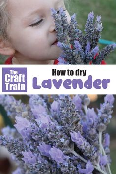 How to dry lavender from your garden to use in home made lavender bags or portpourri. This is fun sensory outdoor activity for kids! Lavender Garden, Lavender Bags, Outdoor Activities For Kids, Activities To Do, Nature Activities, Easy Crafts For Kids, Crafts To Make, Flower Games, Essential Oils For Kids