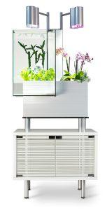 Akvarium med plante filter, dette kaldes akvaponik og er dyrkning af planter og fisk. Dette akvaponik akvarium er fra Bris aquaponics