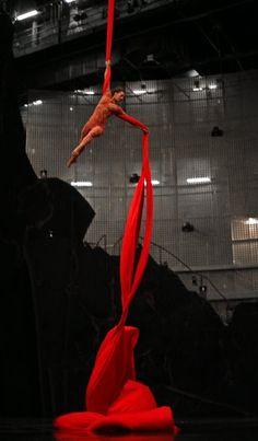 to learn how to do the arial silks  -Arial Silk at La Nouba Show