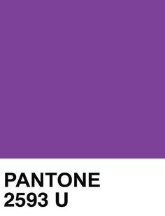 Pantone Purple 2593 U (Imperial Purple)