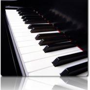 찬희 피아노 피아노 매입
