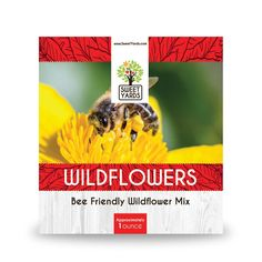 Bee populations all over the country are declining due to a number of stressors. Help out your local honey bee and native bee populations by providing a wildflower meadow of beautiful blooms full of pollen. This mix is sure to help feed the bees in your area. Humble Bee, Natural News, Bridesmaid Inspiration, Local Honey, Bee Friendly, Wildflower Seeds, Believe In Magic, The Beatles, Bees