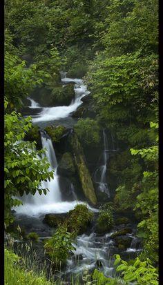 Gorgeous Waterfall Photo !