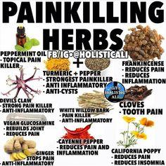 Pin on Natural Remedies & Integrative Health Holistic Remedies, Natural Health Remedies, Natural Cures, Herbal Remedies, Natural Oil, Healing Herbs, Medicinal Herbs, Herbal Plants, Natural Medicine