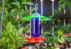 #homeliving #outdoorgardening #feedersbirdhouses #hummingbird #hummingbirdfeeder #birdfeeder #beeproof #dripfree #beeandwaspproof #beeproofhummingbird #hummingbirdfeeder #besthummingbird #copperhummingbird #welovehummingbirds #hummingbirdstoday #depressionglass #hangingbirdfeeder #handmade #glassmasonjar #feedingbirds #giftforwife #cottagecore #outdoors #birdhouse #easytohang #birds Remove Black Mold, Hanging Bird Feeders, Bees And Wasps, No Waste, Vaseline Glass, Glass Votive, Clear Stickers, Bird Species, Adhesive Vinyl