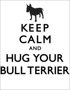 Keep Calm And Hug Your Bull Terrier Mens T-shirt by The Dog Empire. $24.00, via Etsy.