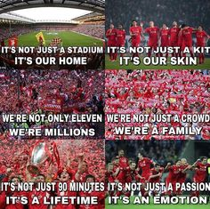 We are Liverpool, this means Liverpool Kop, Liverpool Football Club, Liverpool Anfield, Liverpool History, Fifa Memes, Liverpool Fc Wallpaper, Liverpool Wallpapers, Football Is Life, Football Memes