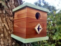 Hand made high quality bird house by SaladoCreekStudios on Etsy, $50.00
