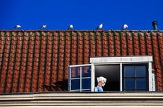 Five Birds Photo by Markus Gebauer Photography -- National Geographic Your Shot