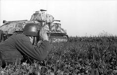 Juni 1944 - Frankreich/Belgien (Flandern).- deutscher Infanteristen mit Fernglas beobachtend, im Gras liegend, im Hintergrund erbeuteter französischer Panzer Somua S-35 der deutschen Wehrmacht im Gelände
