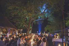 Pafuri Camp wedding reception Bush Wedding, Camp Wedding, Wedding Reception, Big 5, Luxury Holidays, South Africa, Romantic, Camping, Park