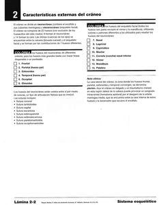 Para colorear sistema esquelético |Miranda Fisioterapia blog Blog, Physical Therapy, Med School, Skeletal System, Teaching Resources, Colour Book, Social Science, Leadership, Free Coloring