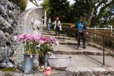 Japaninfo added 27 new photos to the album: ซากุระ@วัด Yoshimine-dera, Rakusai Area/Kyoto — at 善峯寺 あじさい苑/京都市西京区.