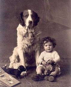 Vintage photo little boy big dog.