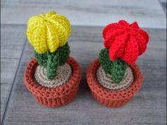 CACTUS DE GANCHILLO CON UN INJERTO - YouTube Crochet Cactus Free Pattern, Crochet Flower Patterns, Crochet Flowers, Crochet Crafts, Cactus Plants, Crochet Earrings, Youtube, Crochet Cactus, Vases
