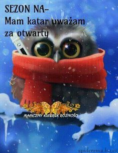 25 ideas gifts animados humor viernes for 2019 Gif Animé, Animated Gif, Gif Pictures, Cute Pictures, Animation, Animals And Pets, Cute Animals, Picture Editor, Beautiful Owl