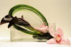 Dark cala lily centerpiece,  dendros, Lilly grass,    Star gazer bloom