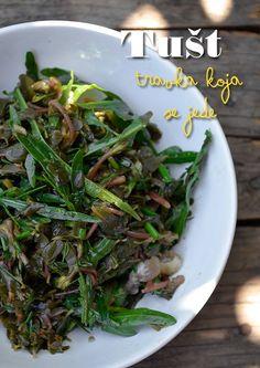 Upoznajemo vas sa još jednom jestivom samoniklom biljkom uz recepte za njenu pripremu: Zelena salata sa tuštom, Salata od tušta sa rukolom & Salata od tušta sa prazilukom.  http://mezze.rs/septembar-2014/ str. 29-33