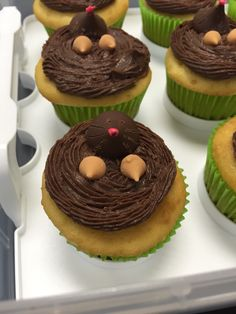 DIY chemistry cupcakes-perfect for mole day!