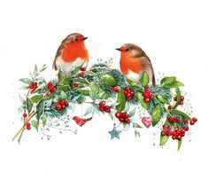 Leading Illustration & Publishing Agency based in London, New York & Marbella. Christmas Bird, Christmas Clipart, Christmas Animals, Christmas Printables, Christmas Pictures, Vintage Christmas, Illustration Noel, Christmas Illustration, Illustrations