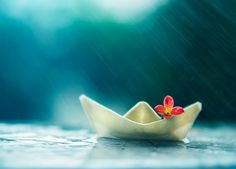 Photograph Little boat and summer rain by Ashraful Arefin on 500px
