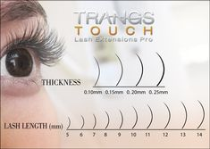 Lash chart for the wide variations of single  lash extensions to design the perfect looks for clients.