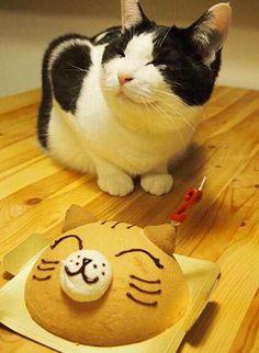 Happy birthday kitty cat:3