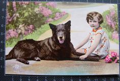 Little Girl with Belgian Shepherd Sheepdog Groenendael dog - tinted