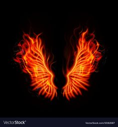 Fire burning wings vector image on VectorStock Desktop Background Pictures, Studio Background Images, Black Background Images, Photo Background Images, Wings Wallpaper, Phoenix Wallpaper, Angel Wings Drawing, Molduras Vintage, Phoenix Wings