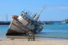 Galapagos: an island of differences: san cristobal galapagos