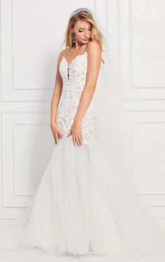 Shop designer bridal gowns like the Synclaire dress by WTOO and other bridal accessories at Blush Bridal. Wtoo Bridal, Blush Bridal, Bridal Gowns, Sexy Wedding Dresses, Designer Wedding Dresses, Lace Wedding, Wedding Gowns, Mermaid Wedding, Modest Wedding