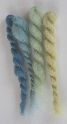 Dyeing with Japanese indigo (Plygonum tinctorium)