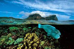 Howe Island. Isla de Lord Howe