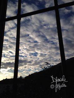 Nuvole in gabbia...