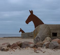 Blavand, bunker horses on the beach