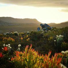 Sunset from Muizenberg Peak, Cape Town