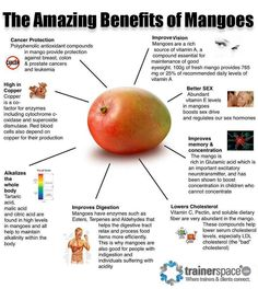 Healthy Living Health Benefits of - Do you know the array of health benefits mango has to offer? If no, learn here about benefits of mangoes, nutrition facts, healthy recipes Mango Health Benefits, Fruit Benefits, Get Healthy, Healthy Tips, Healthy Eating, Healthy Recipes, Healthy Foods, Diet Foods, Tea Recipes