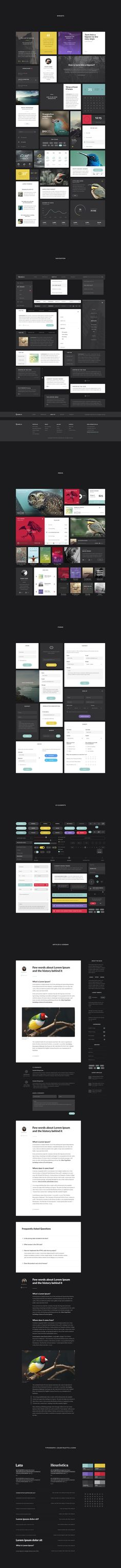Aves UI Kit Published by Maan Ali
