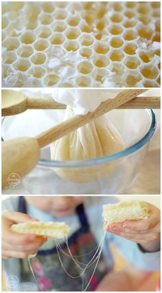 Learning about Honeybees: How to extract honey from honeycomb by hand | Child-led Homeschooling from An Everyday Story