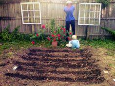 Garden is ready